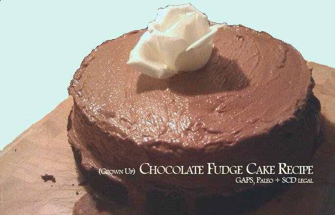 choc fudge cake recipe photo copy