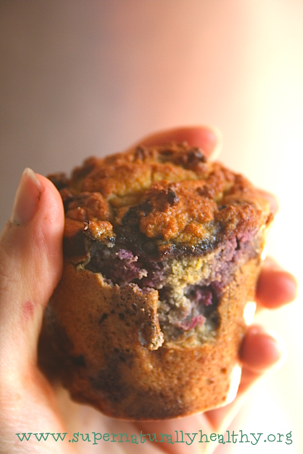 lemon blueberry muffin2
