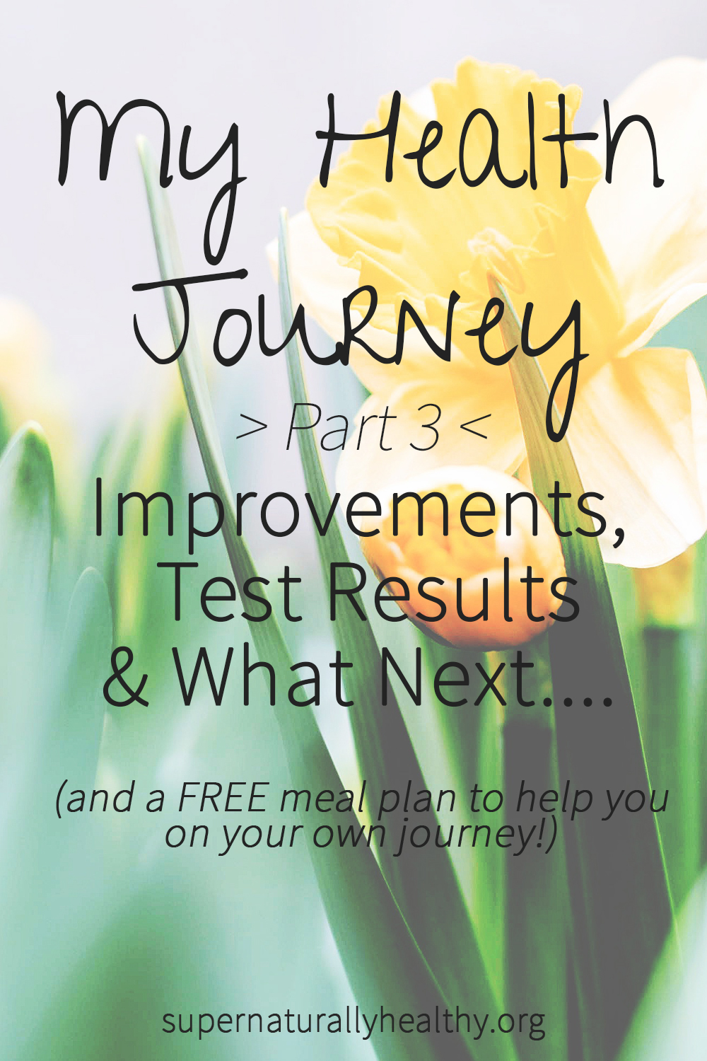 My Health Journey (Pt 3): Improvements, test results & what next.... -  Kezia Hall | Holistic Nutritionist & Health Coach - Healthy Living, Grain  Free Recipes